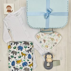 Cheeky Monkey | Sweet Arrivals baby hampers