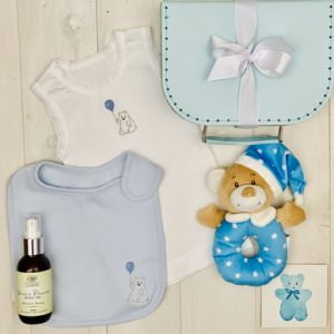 Fun with Teddy - Blue - FREE SHIPPING