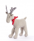 Dasher the Reindeer Gift Pack