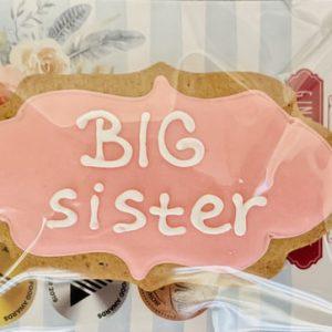 Adri's Gingerbread cookies | Sweet Arrivals Baby Hampers